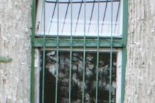 Korszerű ablakra cserélt nyílászáró csere előtt